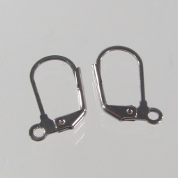 Earring Stainless Steel